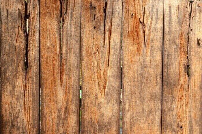 木材劣化対策